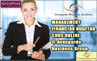 MANAGEMENT FINANCIAR BUGETAR  - CURS ONLINE @ Avangarde Business Group